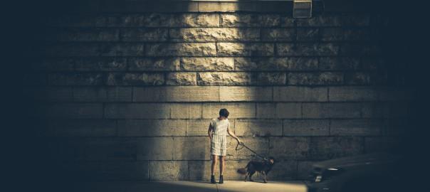 cone-of-light-dog-light-3335[1]